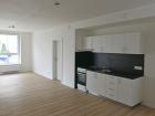 Pravidla pronájmu bytů v domech v majetku statutárního města Brna